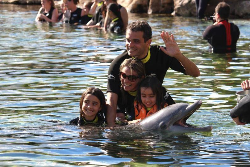 viagem e intercambio em familia golfinho